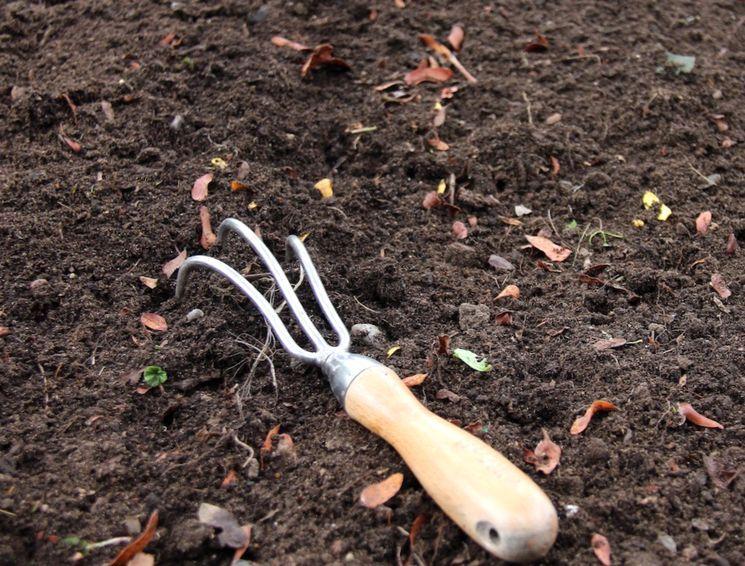 Грядка для чеснока - подготовка почвы