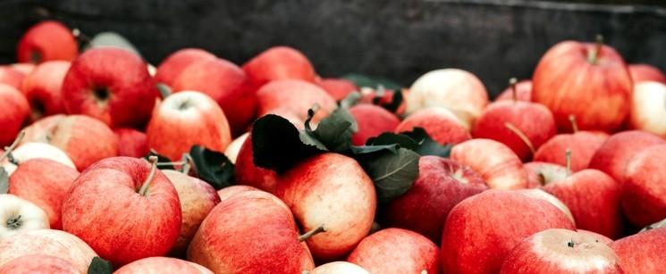 Как празднуют Яблочный Спас