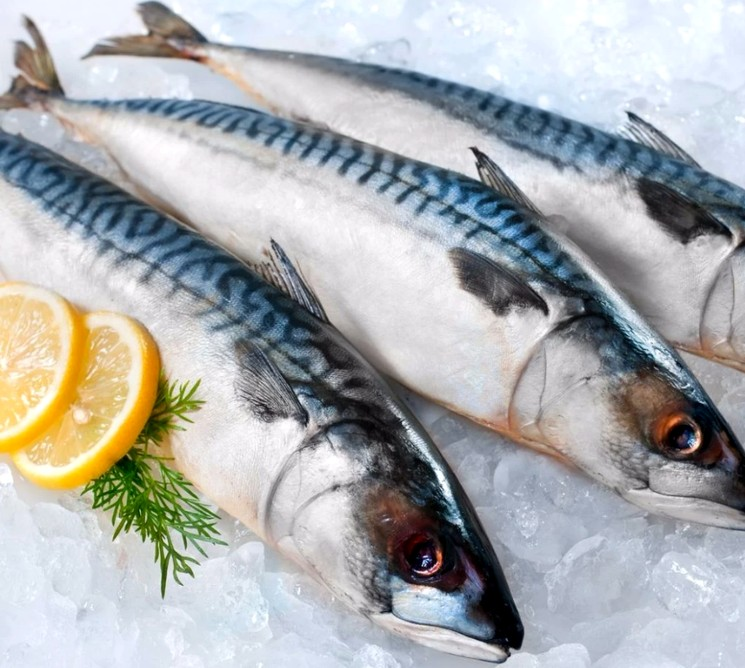 Как засолить рыбу дома - рецепт скумбрии в пряном маринаде