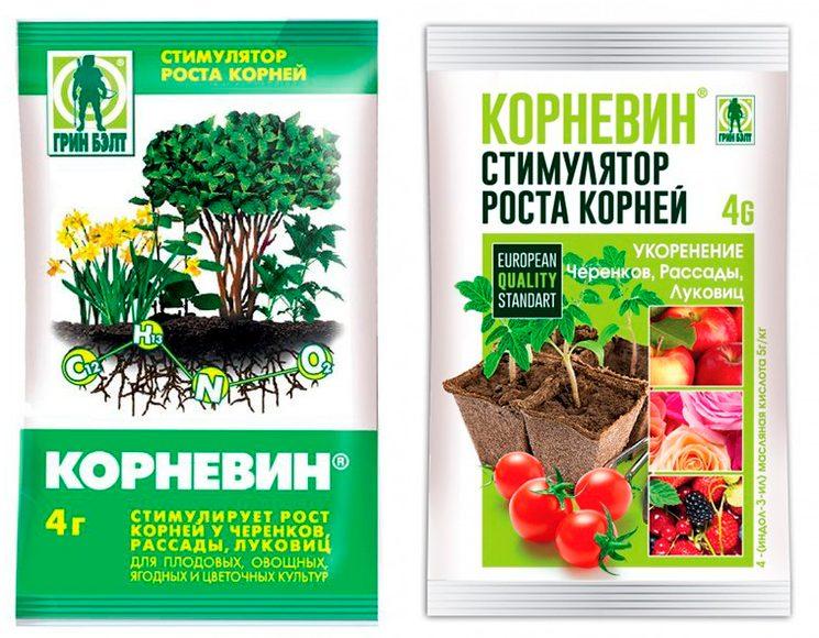 Корневин - регулятор роста растений
