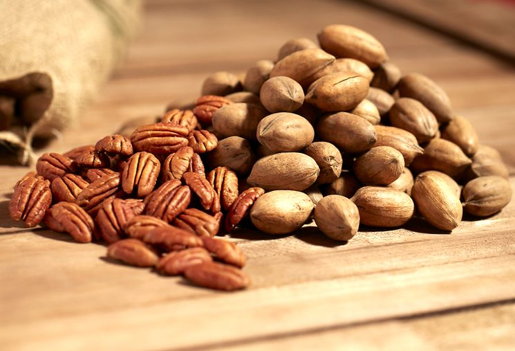 Орехи пекан - природный антиоксидант