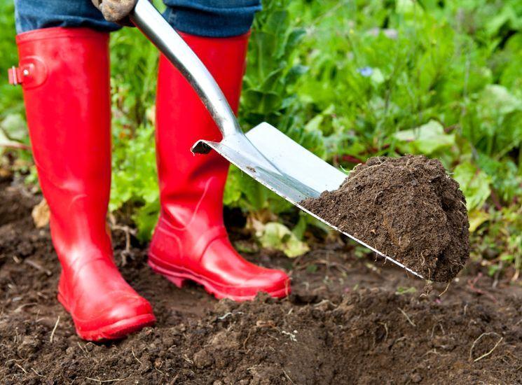 Подготовка почвы на весну