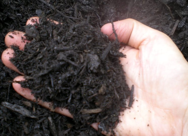 Удобрение грунта осенью