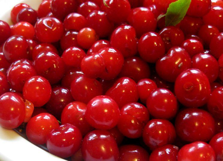 Ягоды вишни для варенья